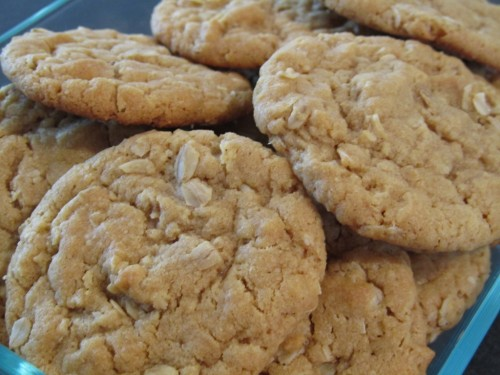 oat meal cookie